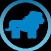 Blocks homepage - Azienda partner di produzione e distribuzione